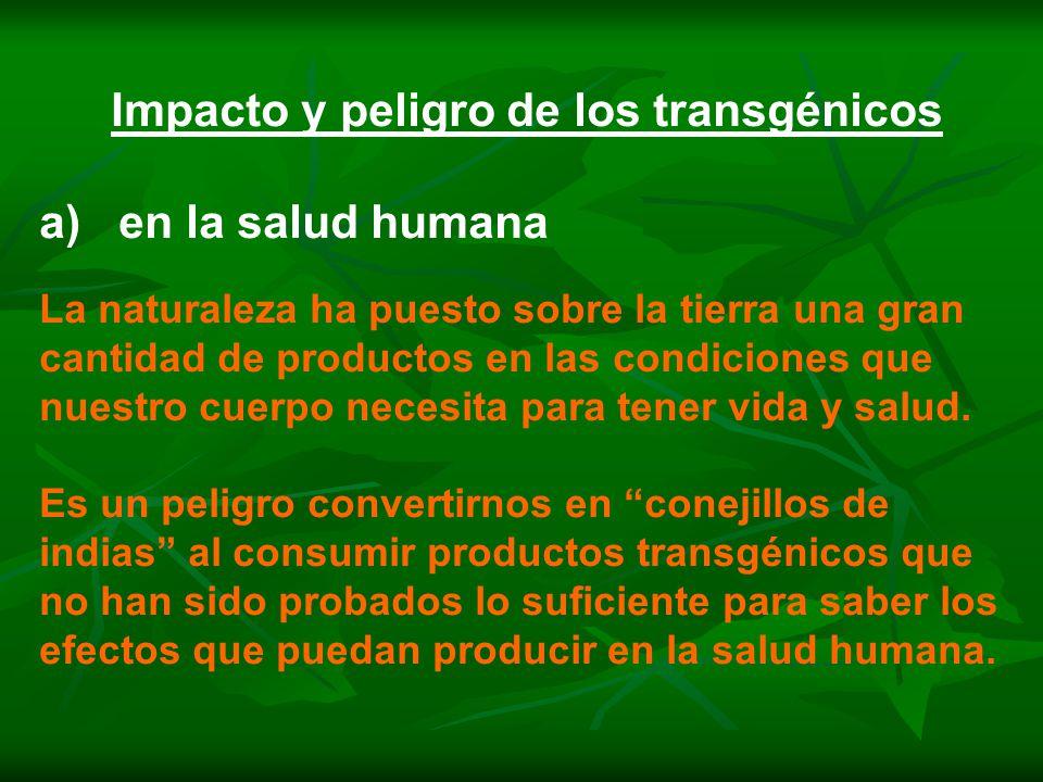 Impacto y peligro de los transgénicos