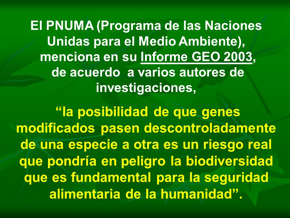 El PNUMA (Programa de las Naciones Unidas para el Medio Ambiente),