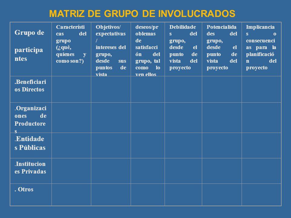 MATRIZ DE GRUPO DE INVOLUCRADOS
