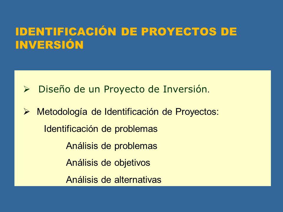 IDENTIFICACIÓN DE PROYECTOS DE INVERSIÓN
