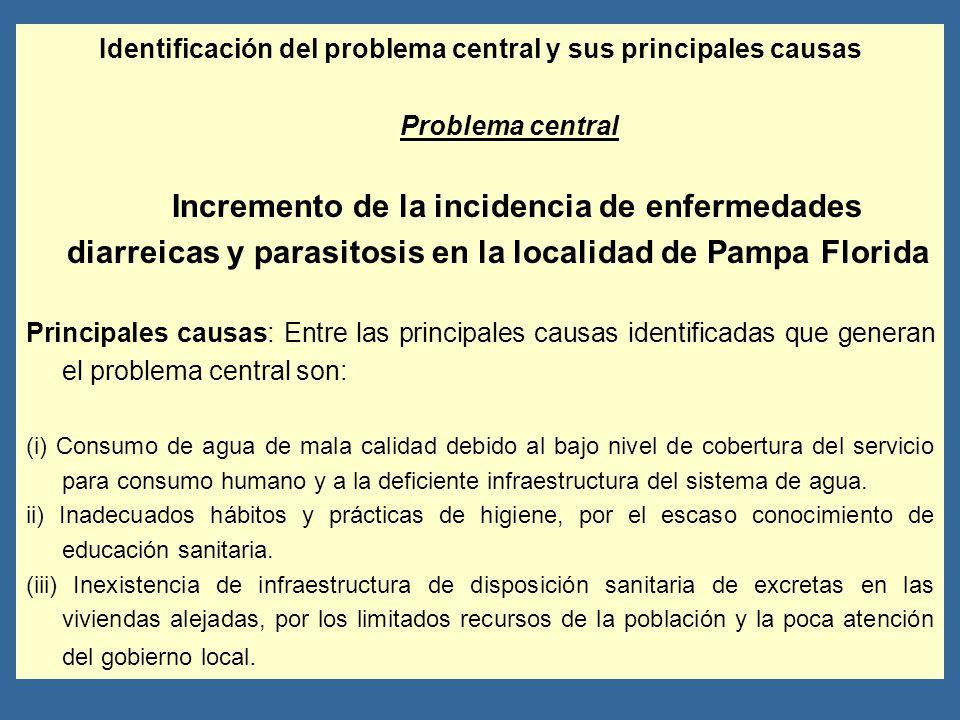 Identificación del problema central y sus principales causas