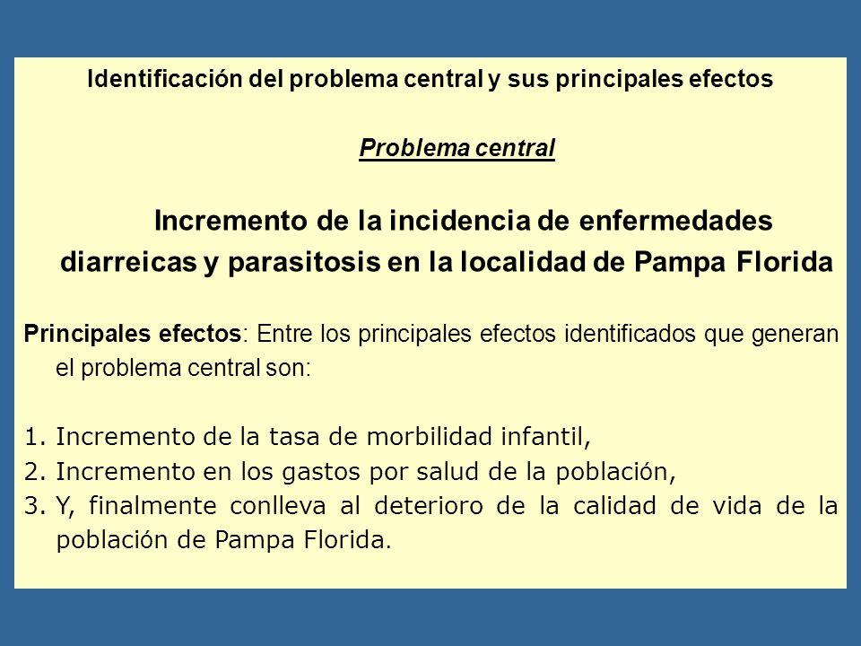 Identificación del problema central y sus principales efectos