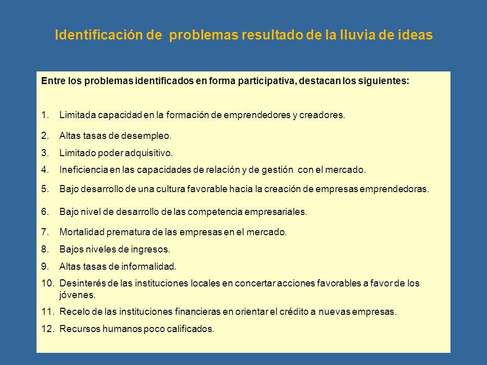 Identificación de problemas resultado de la lluvia de ideas