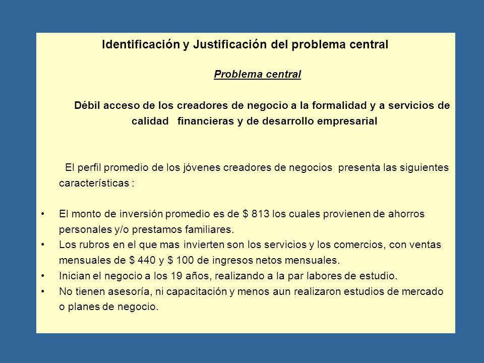 Identificación y Justificación del problema central