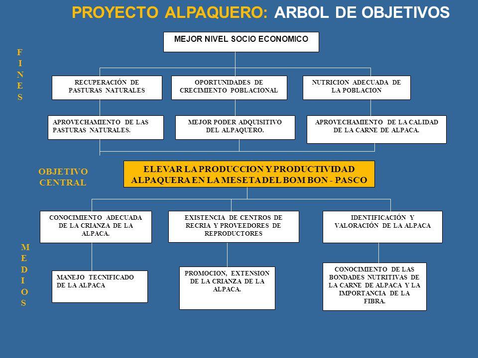 PROYECTO ALPAQUERO: ARBOL DE OBJETIVOS