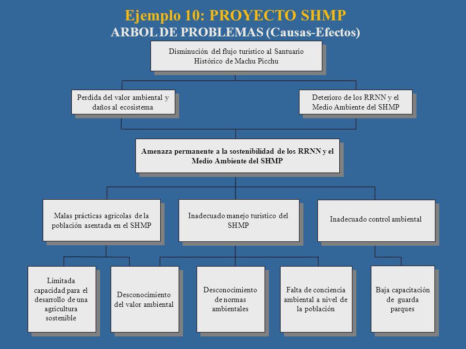 Ejemplo 10: PROYECTO SHMP ARBOL DE PROBLEMAS (Causas-Efectos)