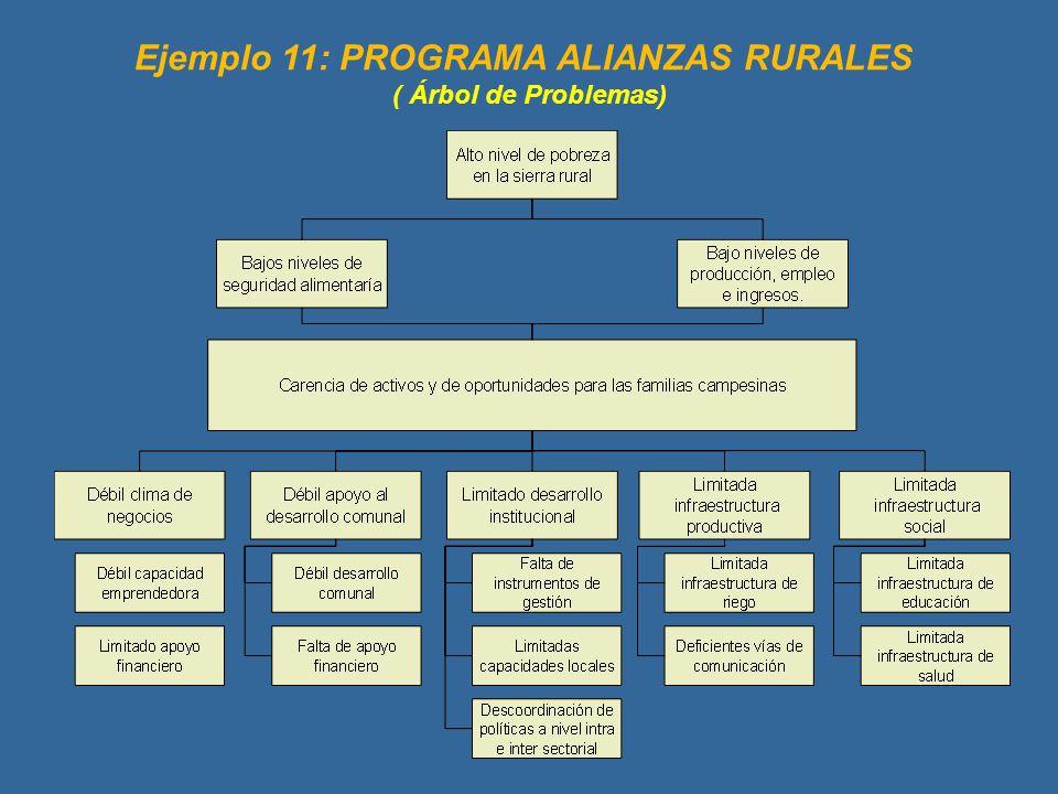 Ejemplo 11: PROGRAMA ALIANZAS RURALES