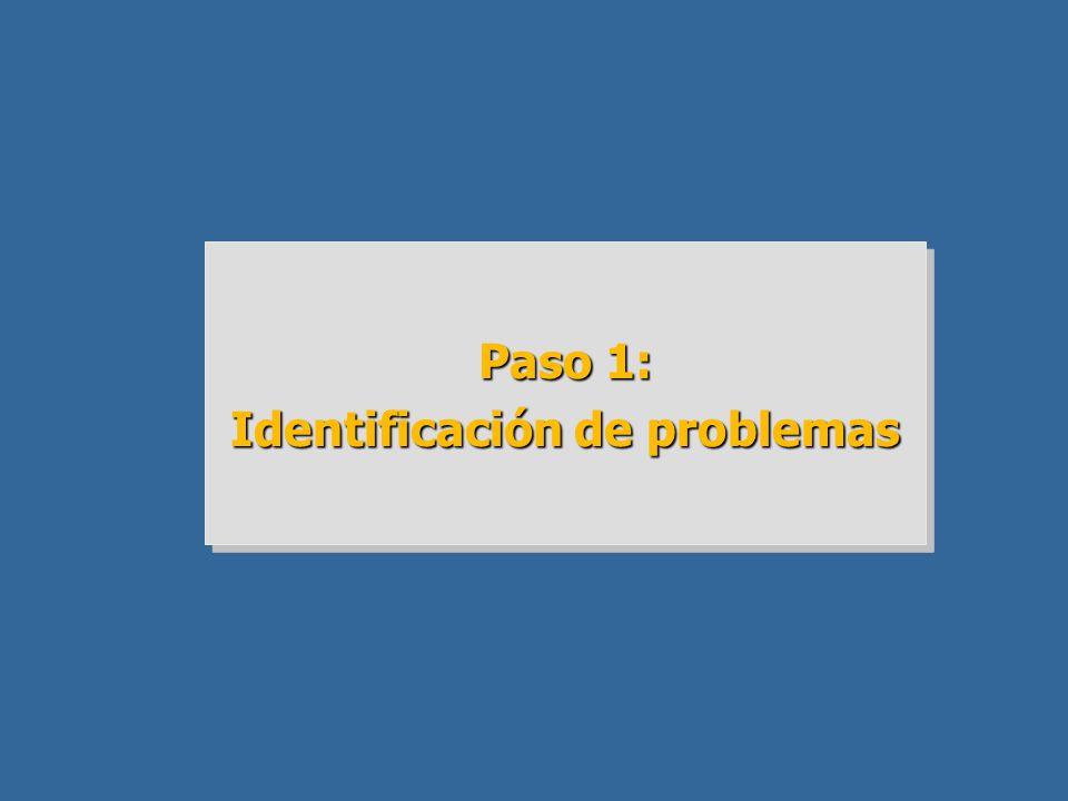 Identificación de problemas