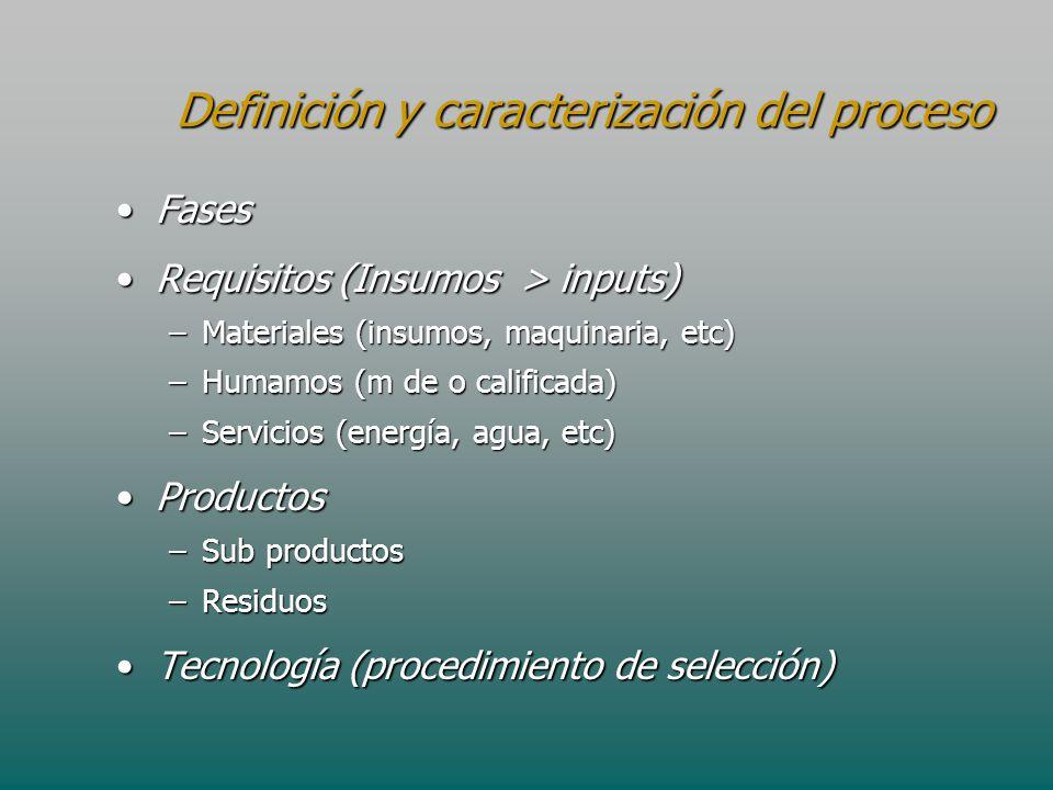 Definición y caracterización del proceso