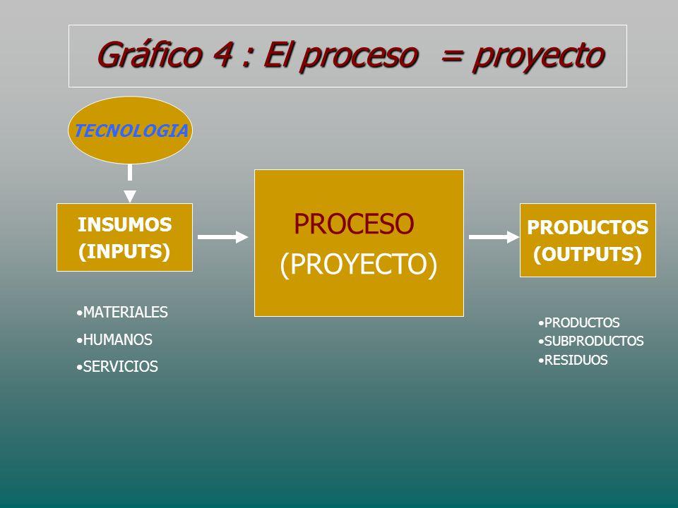Gráfico 4 : El proceso = proyecto