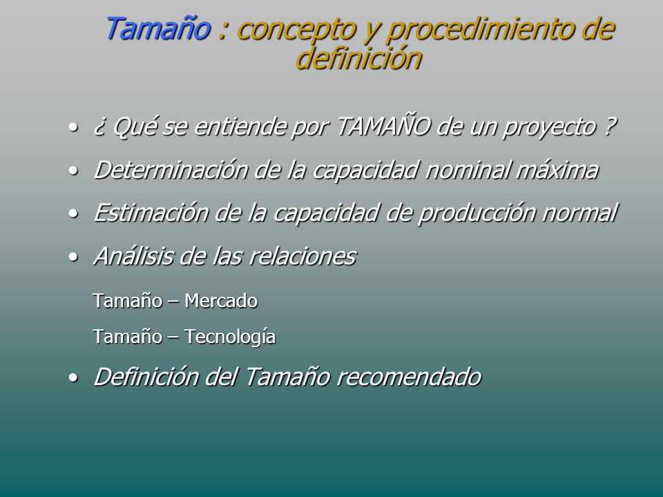 Tamaño : concepto y procedimiento de definición