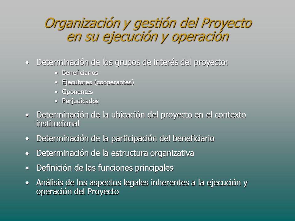 Organización y gestión del Proyecto en su ejecución y operación