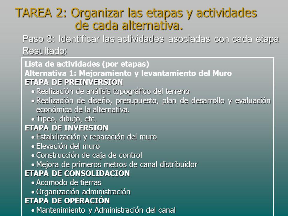 TAREA 2: Organizar las etapas y actividades de cada alternativa.