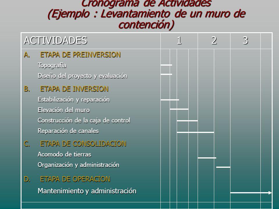 Cronograma de Actividades (Ejemplo : Levantamiento de un muro de contención)