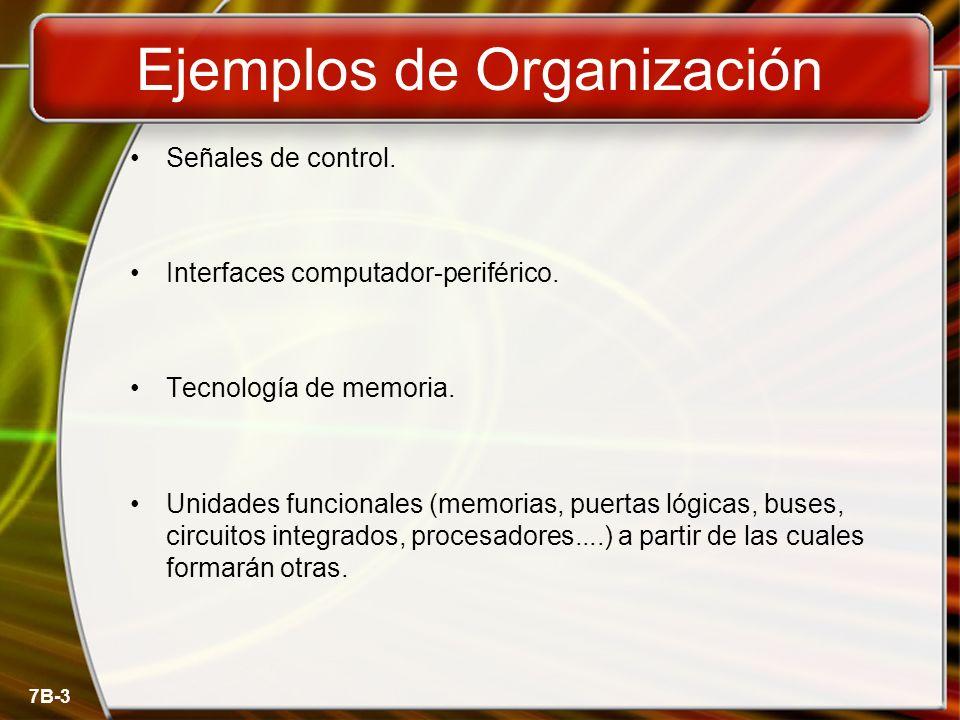 Ejemplos de Organización