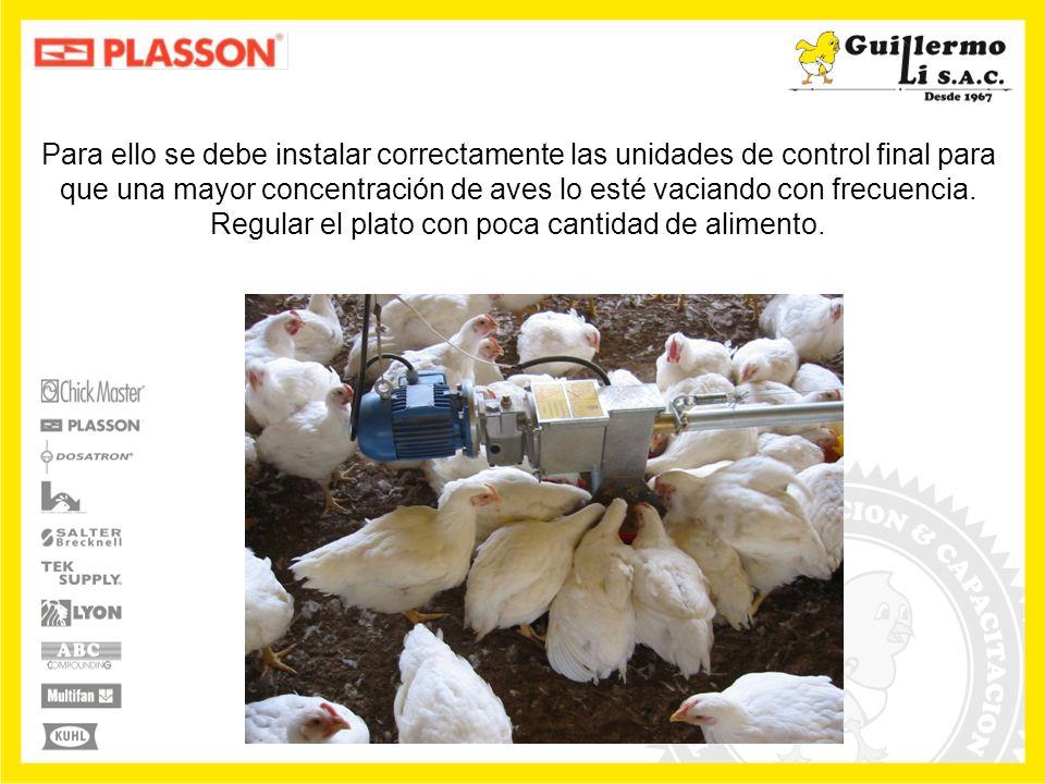 Para ello se debe instalar correctamente las unidades de control final para que una mayor concentración de aves lo esté vaciando con frecuencia.