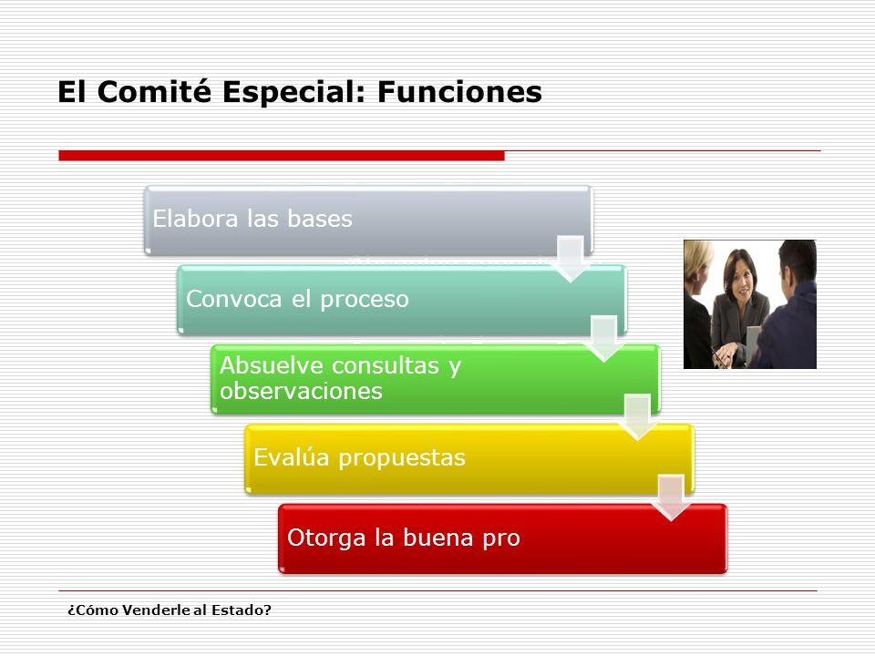 El Comité Especial: Funciones