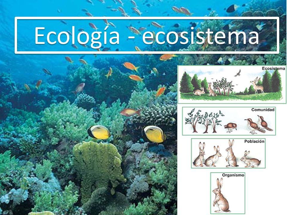 Ecología - ecosistema