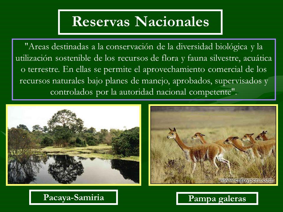 Reservas Nacionales