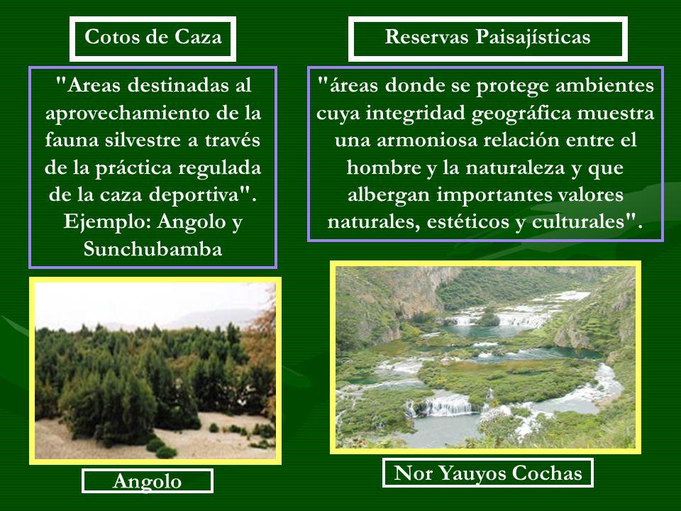 Reservas Paisajísticas