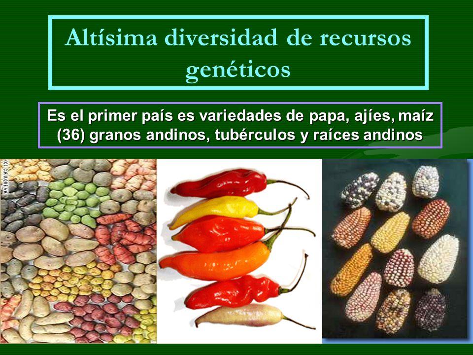 Altísima diversidad de recursos genéticos