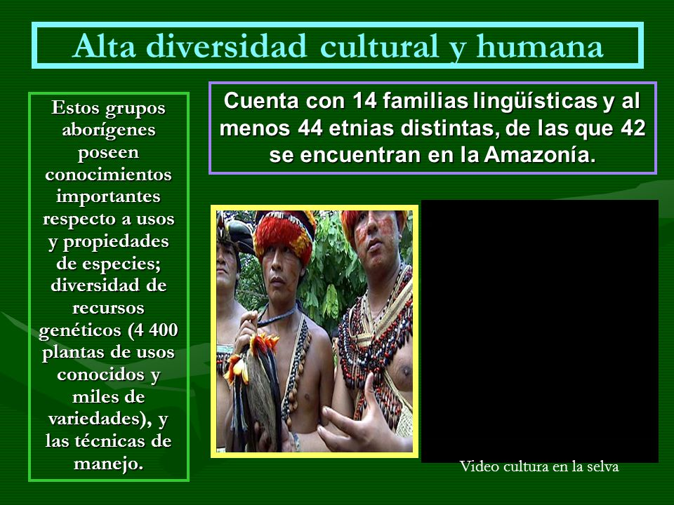 Alta diversidad cultural y humana