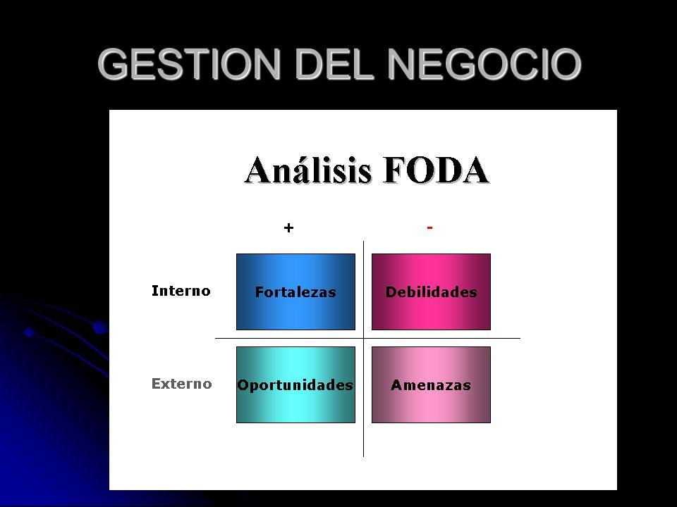 GESTION DEL NEGOCIO