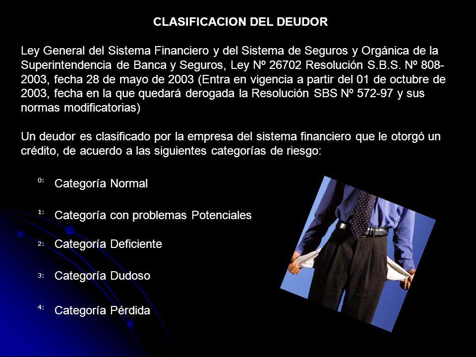 CLASIFICACION DEL DEUDOR