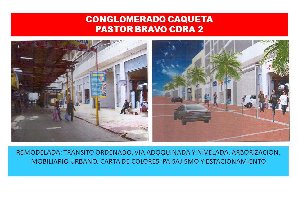CONGLOMERADO CAQUETA PASTOR BRAVO CDRA 2