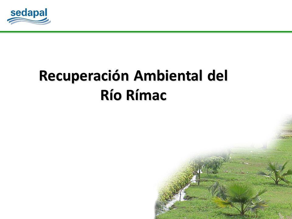 Recuperación Ambiental del Río Rímac