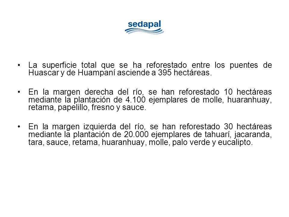 La superficie total que se ha reforestado entre los puentes de Huascar y de Huampaní asciende a 395 hectáreas.