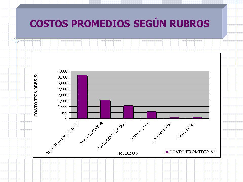 COSTOS PROMEDIOS SEGÚN RUBROS