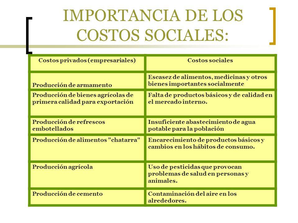 IMPORTANCIA DE LOS COSTOS SOCIALES: