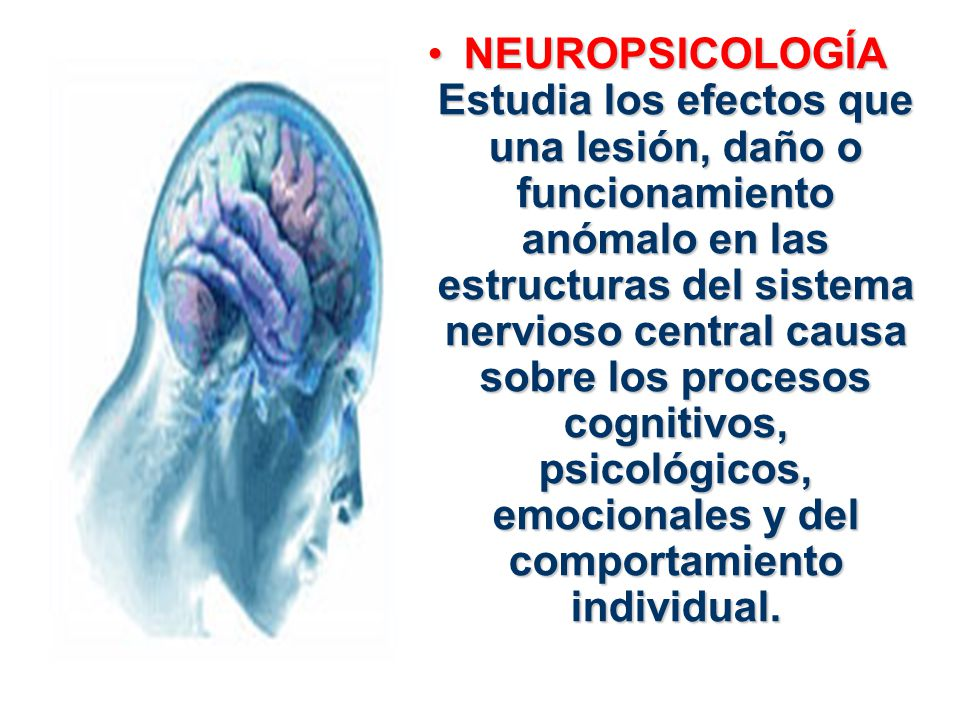 NEUROPSICOLOGÍA Estudia los efectos que una lesión, daño o funcionamiento anómalo en las estructuras del sistema nervioso central causa sobre los procesos cognitivos, psicológicos, emocionales y del comportamiento individual.