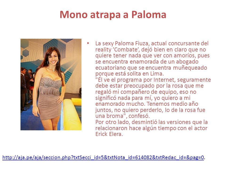 Mono atrapa a Paloma