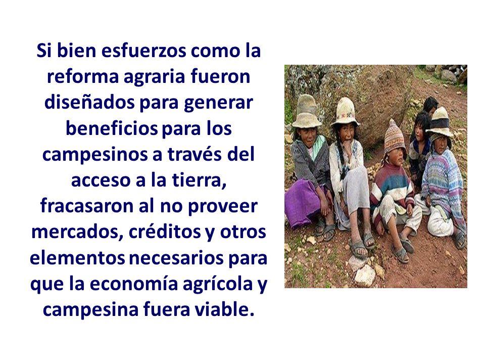 Si bien esfuerzos como la reforma agraria fueron diseñados para generar beneficios para los campesinos a través del acceso a la tierra, fracasaron al no proveer mercados, créditos y otros elementos necesarios para que la economía agrícola y campesina fuera viable.