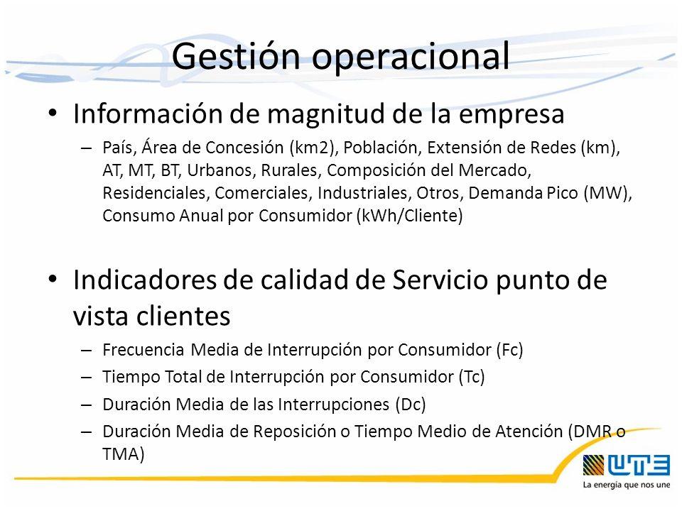 Gestión operacional Información de magnitud de la empresa