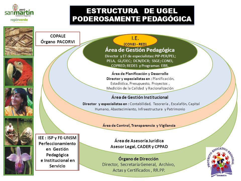 ESTRUCTURA DE UGEL PODEROSAMENTE PEDAGÓGICA