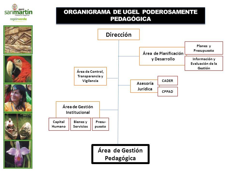 Dirección Área de Gestión Pedagógica