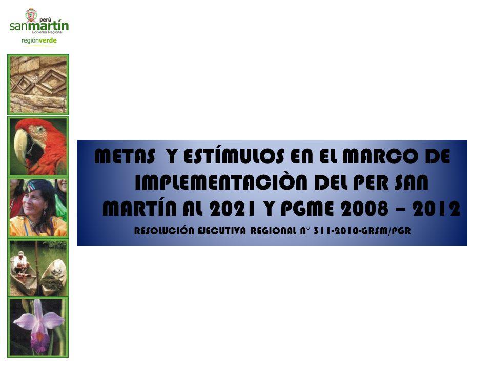 RESOLUCIÓN EJECUTIVA REGIONAL N° 311-2010-GRSM/PGR