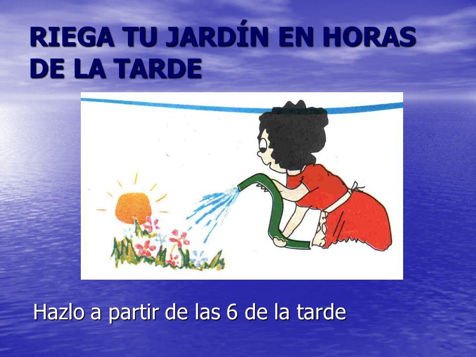 RIEGA TU JARDÍN EN HORAS DE LA TARDE