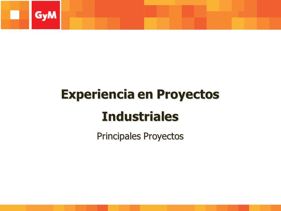 Experiencia en Proyectos Industriales