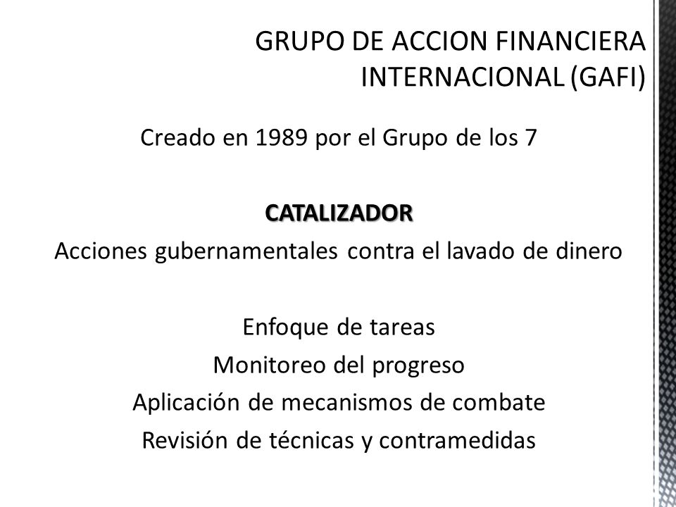 GRUPO DE ACCION FINANCIERA INTERNACIONAL (GAFI)