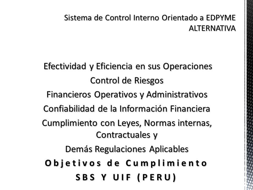 Sistema de Control Interno Orientado a EDPYME ALTERNATIVA