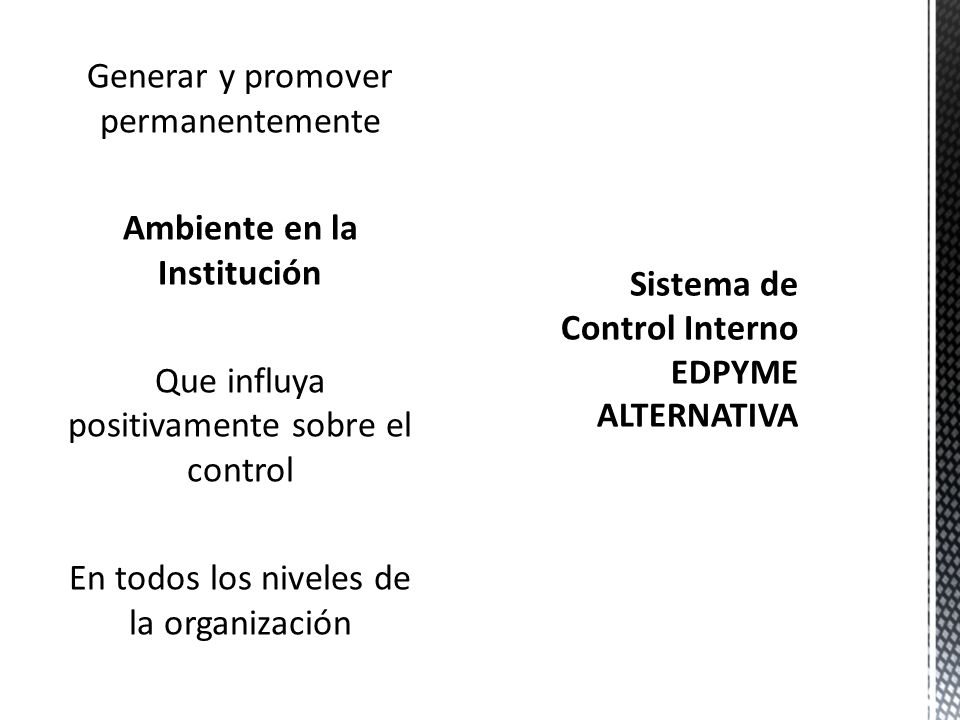 Sistema de Control Interno EDPYME ALTERNATIVA