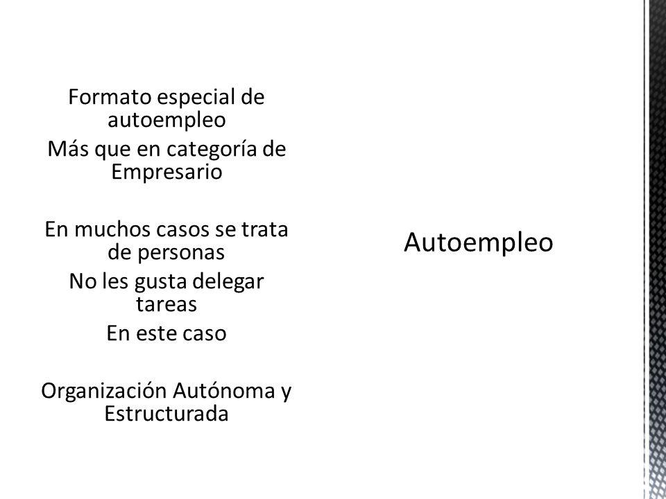 Formato especial de autoempleo Más que en categoría de Empresario En muchos casos se trata de personas No les gusta delegar tareas En este caso Organización Autónoma y Estructurada
