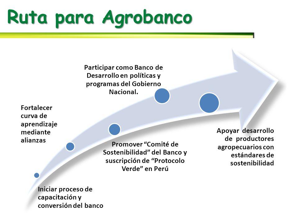 Ruta para Agrobanco Iniciar proceso de capacitación y conversión del banco. Fortalecer curva de aprendizaje mediante alianzas.