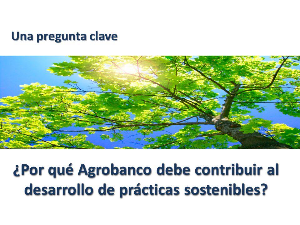 Una pregunta clave ¿Por qué Agrobanco debe contribuir al desarrollo de prácticas sostenibles