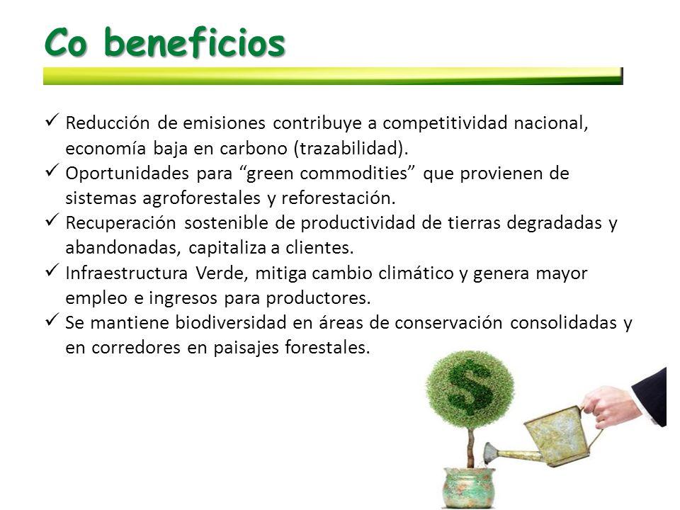 Co beneficios Reducción de emisiones contribuye a competitividad nacional, economía baja en carbono (trazabilidad).