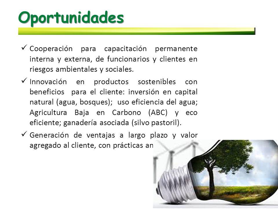Oportunidades Cooperación para capacitación permanente interna y externa, de funcionarios y clientes en riesgos ambientales y sociales.